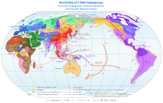world_map_of_y-dna_haplogroups